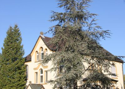 Liebfrauen Kirche 3
